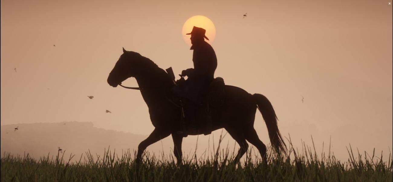 Screenshot_2018-11-06 Screens - Red Dead Redemption 2(6)